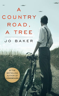 A country road a tree Jo Baker