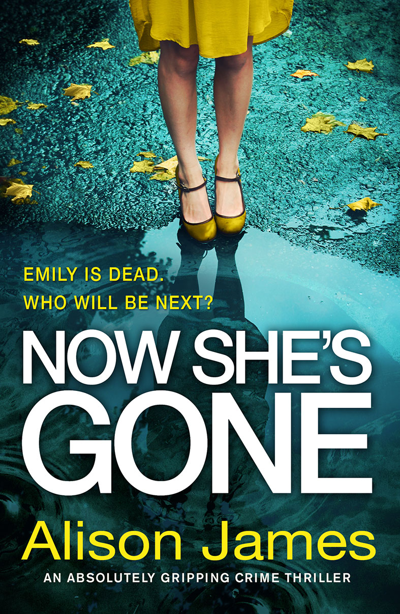 NOW SHE IS GONE by Alison James