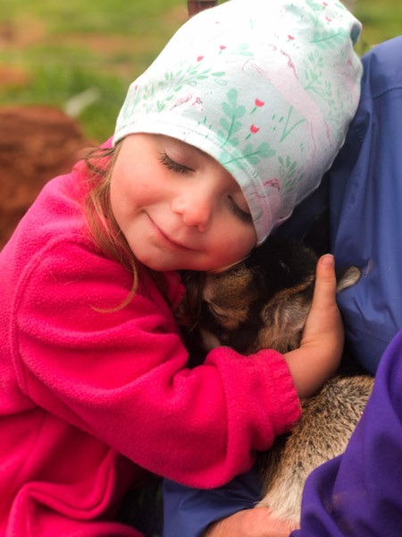 Petting Farm 4.jpg