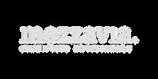 Logo Mezzavia.png