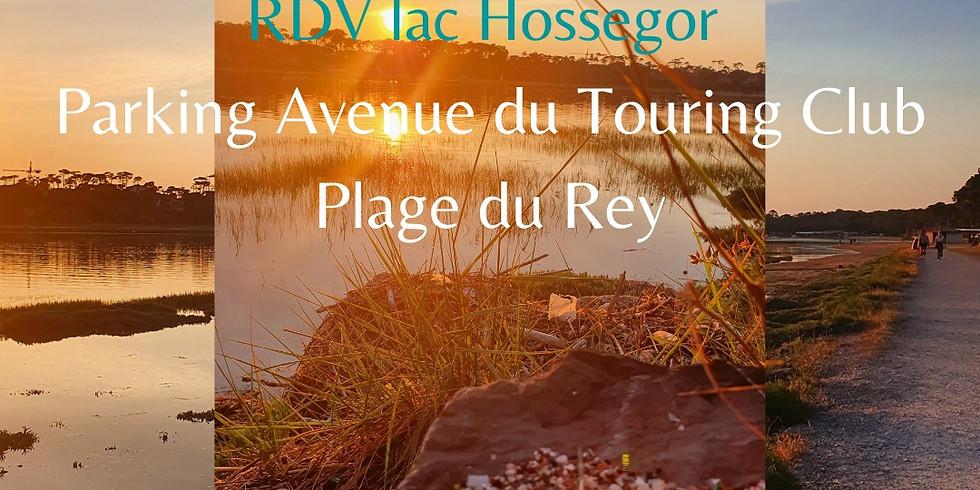 Ramassage au Lac d'Hossegor
