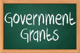 What is a 'Government Grant'