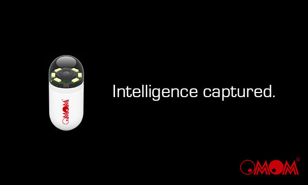 Intelligence Captured.jpg