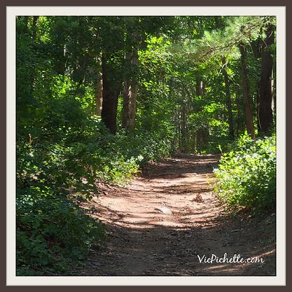 vicpichette.com path 1.png