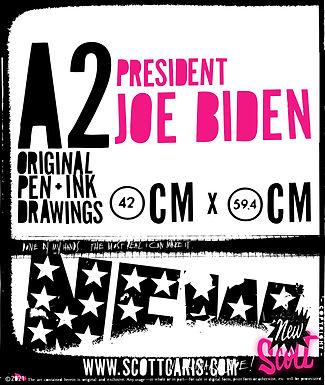 Joe Biden_TALL_rollover.jpg