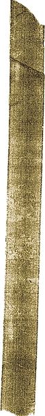 tape strip 2.png