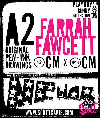 Farrah Fawcett_TALL_rollover.jpg