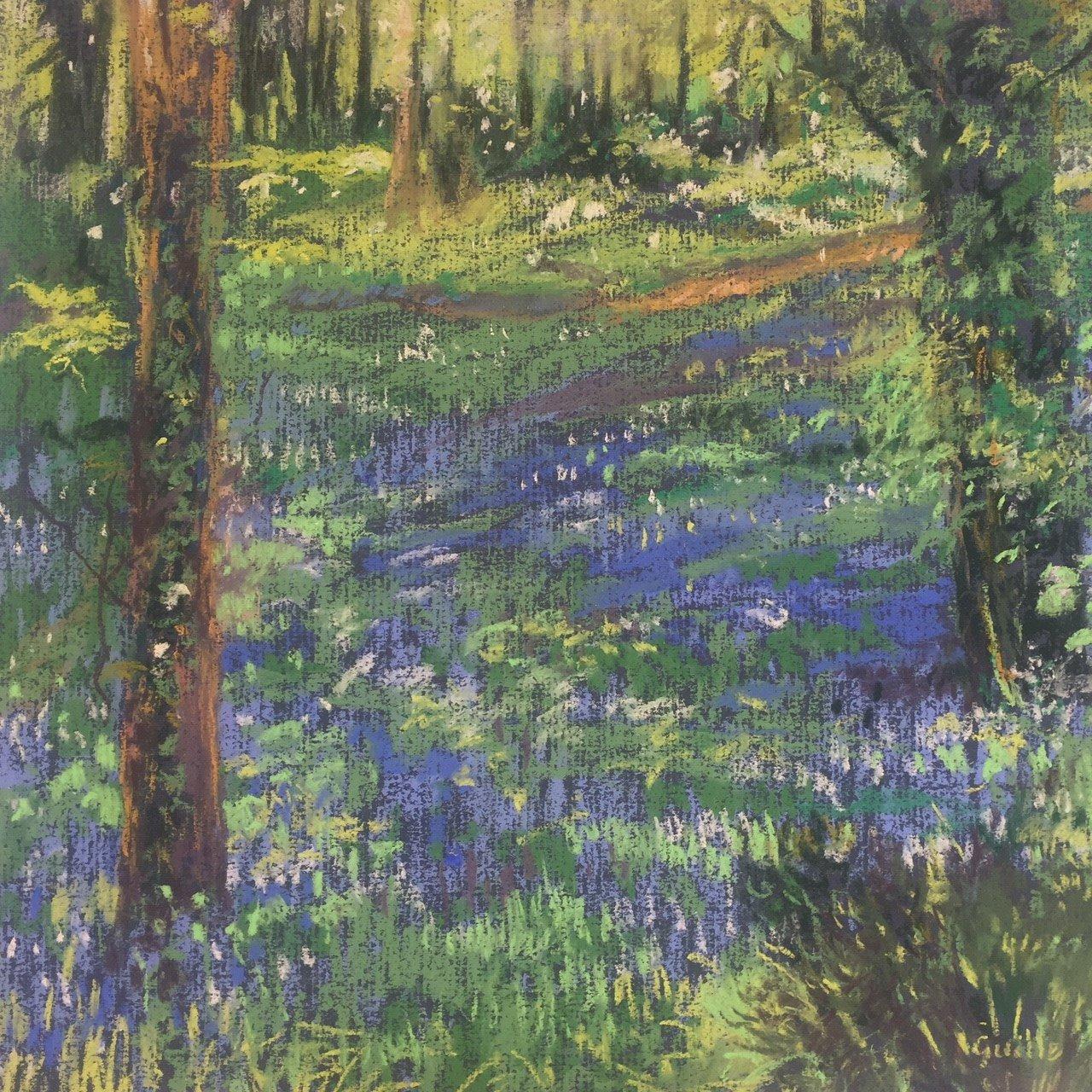 Bluebell Woods Guernsey
