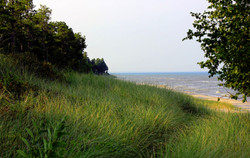 Gfp-wisconsin-point-beach-state-park-shoreline-and-forest_edited