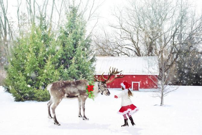 Weekend Fun for Tri-County Kids: Santa, Lights, & Festivals