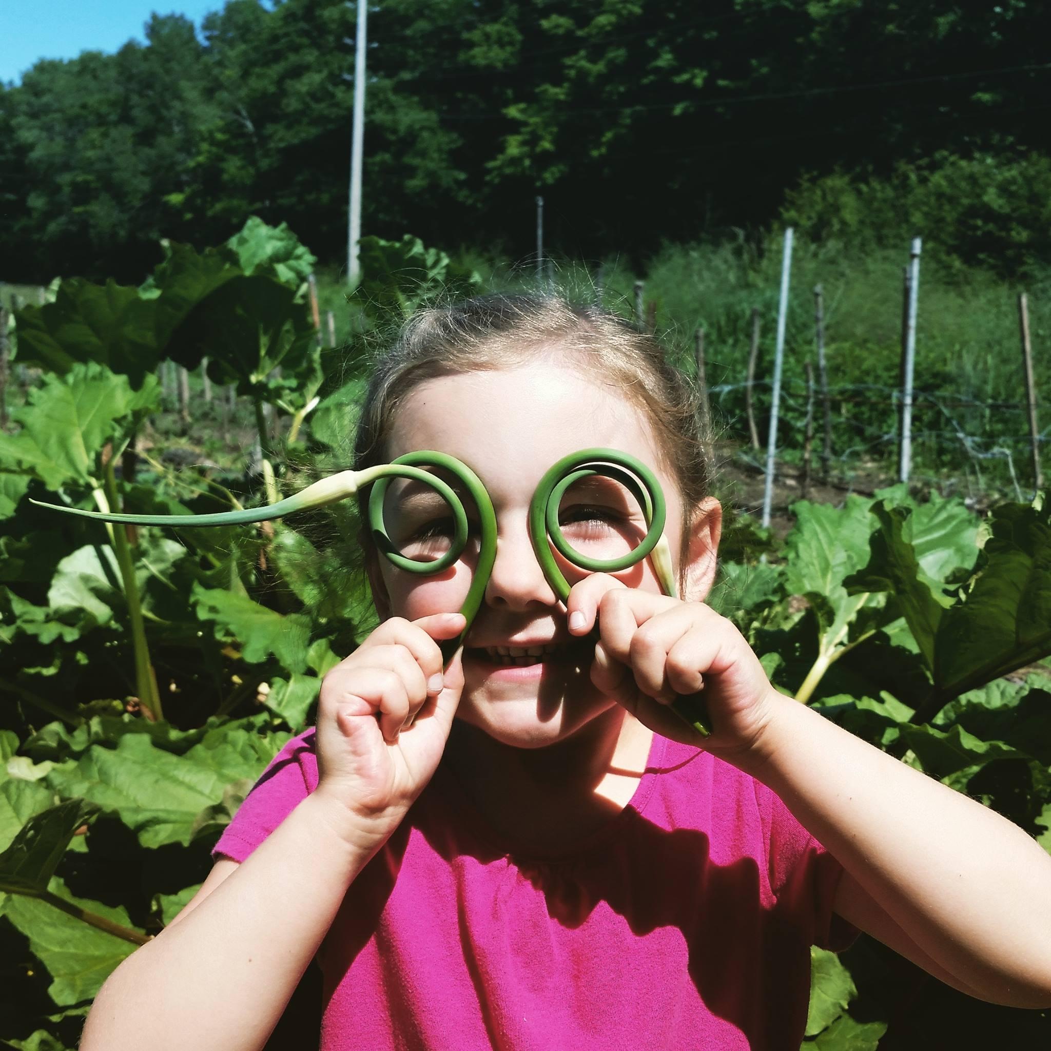 Garlic scape goggles
