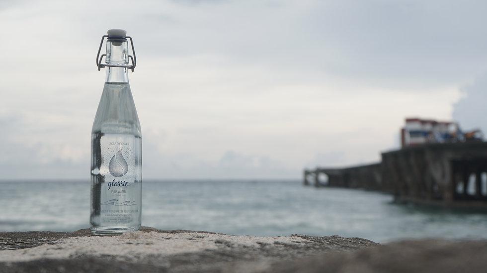 bottle_rock_ocean_horizontal.JPG