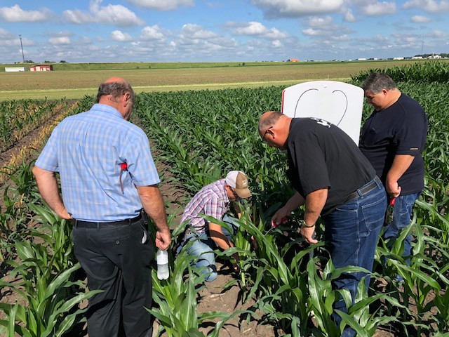 Farmers participate in a research event hosted by Beck's Hybrids / CIFN photo.