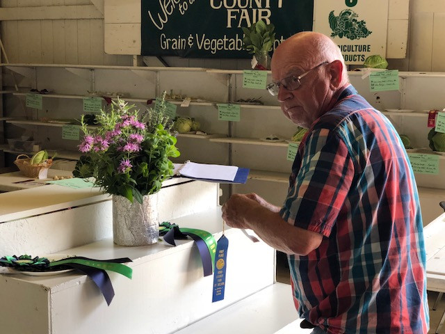 Exhibits are judged at the Ford County Fair on Monday / EOCI photo.