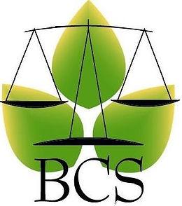 BCS PLAIN LOGO.jpg