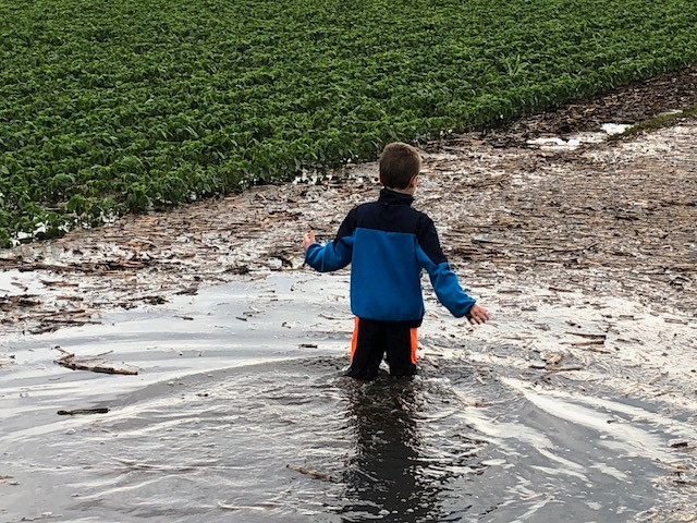 Kent's son, Kasen, plays after recent rains / CIFN photo.