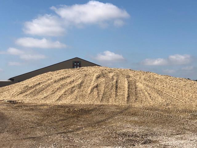 Silage piled at Kilgus Dairy south of Fairbury last week / CIFN photo.
