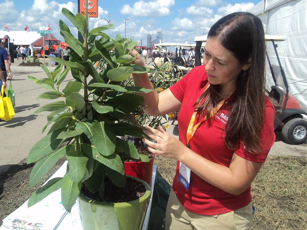 Laura Vance of BASF talks about the benefits of milkweed at this year's Farm Progress Show in Decatur / CIFN photo.