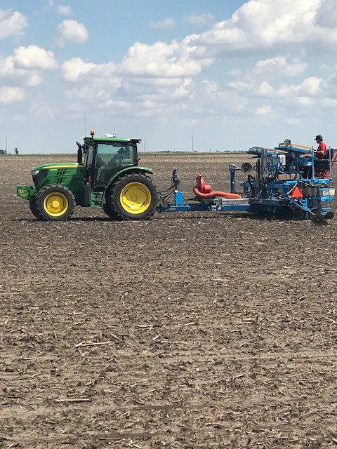A Golden Harvest seed plot near Sibley was planted last week / courtesy of Bob Lawless.