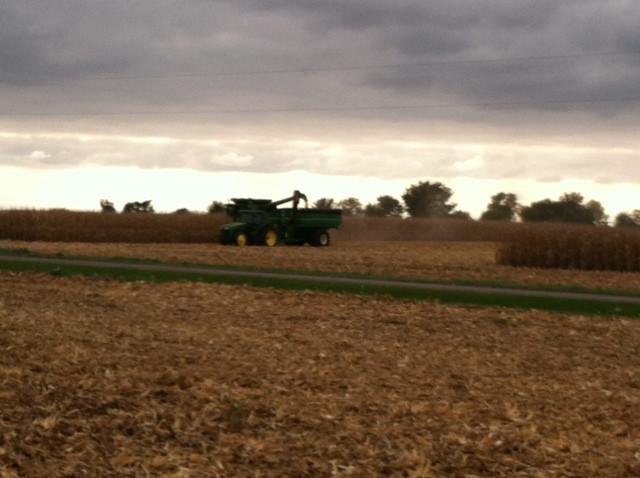 Corn harvest near Weston in McLean County / CIFN photo.