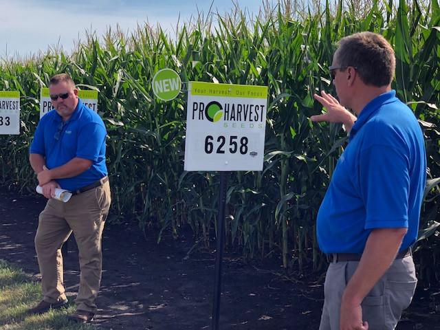 Sean Jordal and Randy Wilken at the ProHarvest Seeds plot tour last week / CIFN photo.