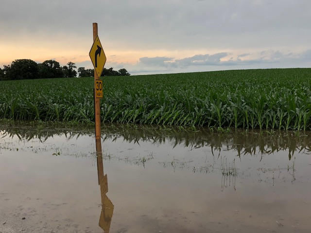Water surrounds a road sign and cornfield near Fairbury Sunday afternoon in Livingston County / CIFN photo.