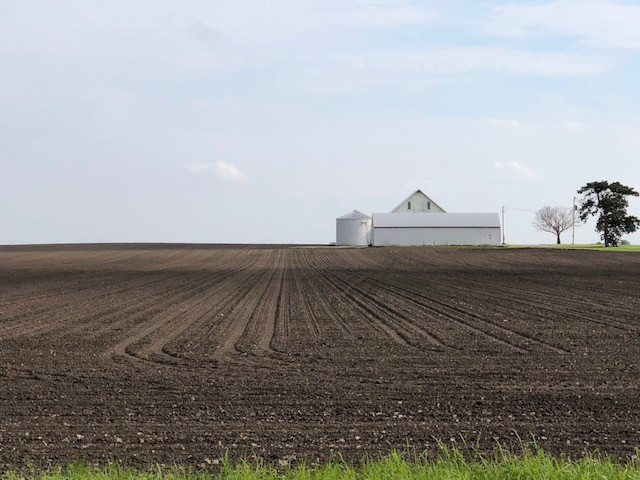 A Ford County farmstead is shown last week / CIFN photo.