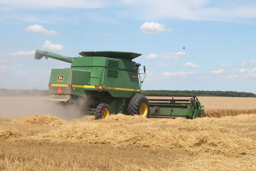 A previous wheat harvest in Central Illinois / CIFN file photo.