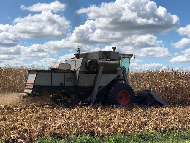 A farmer harvests corn in McLean County on Monday afternoon / CIFN photo.