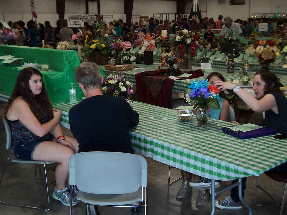 Exhibits are judged Wed. at the McLean County Fair / CIFN photo.