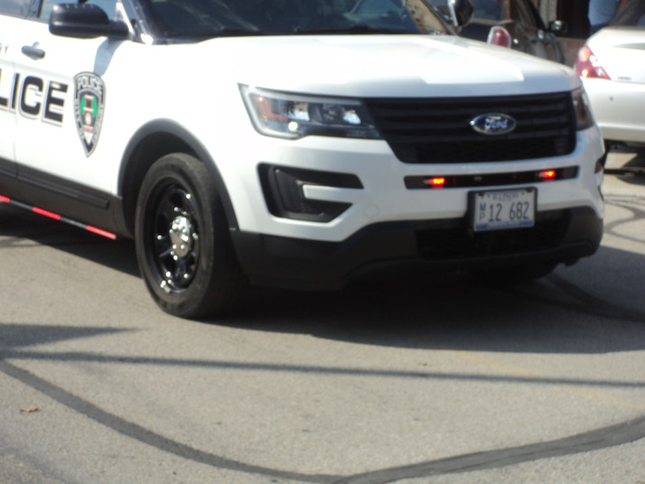 Ford County police activity