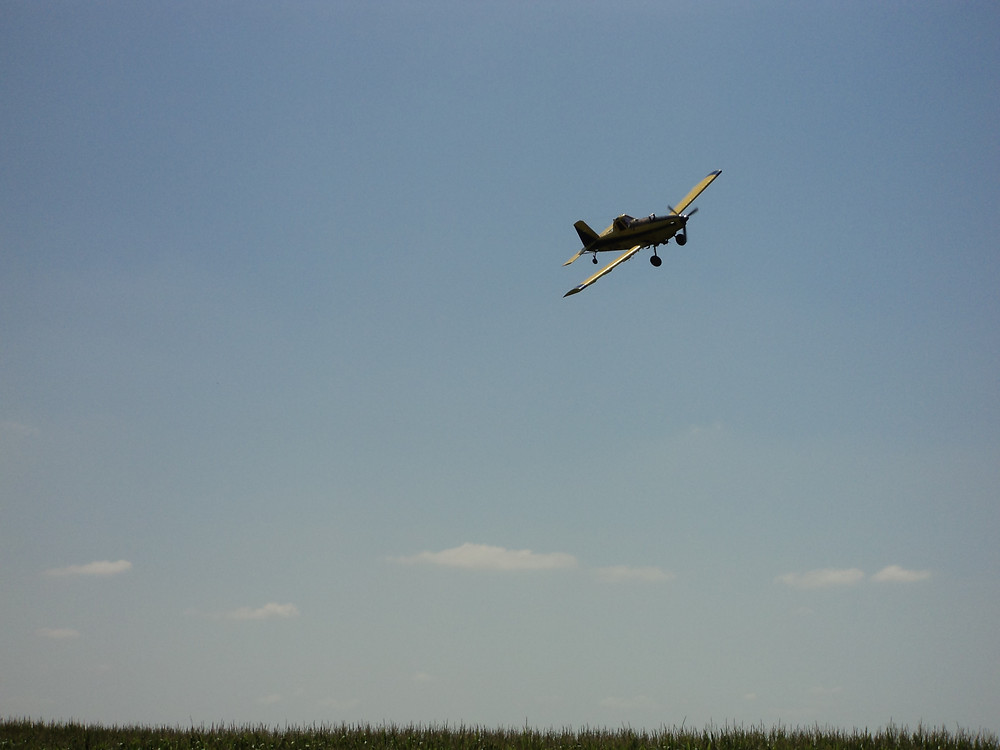 A plane prepares to spray an area field during a previous growing season / CIFN file photo.
