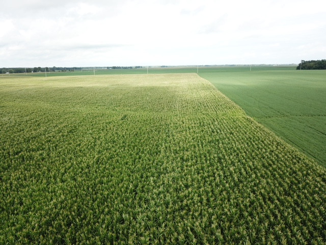 Photo of an area field, courtesy of Tom Kahle for the CIFN.
