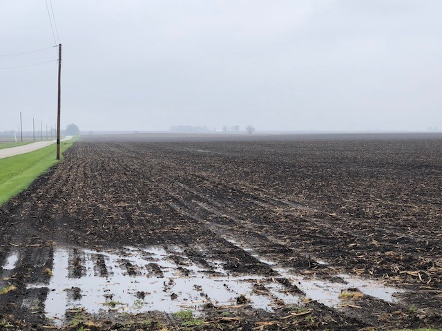 A wet field shown Saturday in Livingston County / CIFN photo.
