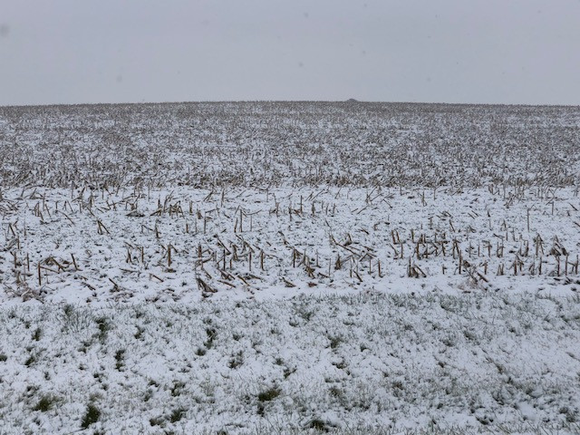 A snow covered field is shown in Central Illinois last week / CIFN photo.
