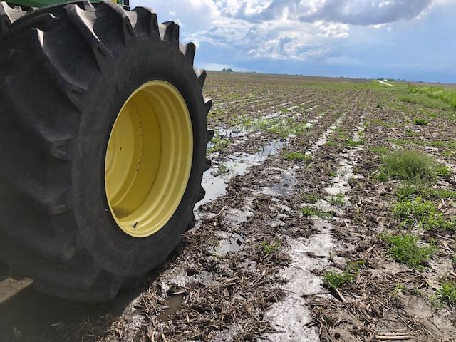 A tractor is shown near mud in a Livingston County field last week / CIFN photo.