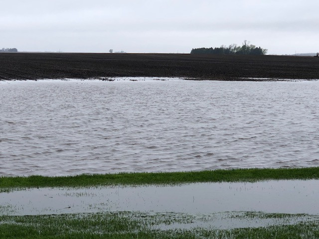 A flooded field is shown in Livingston County Wednesday afternoon / CIFN photo.