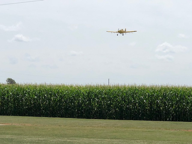 A crop duster flies over a corn field Monday afternoon in Livingston County / CIFN photo.