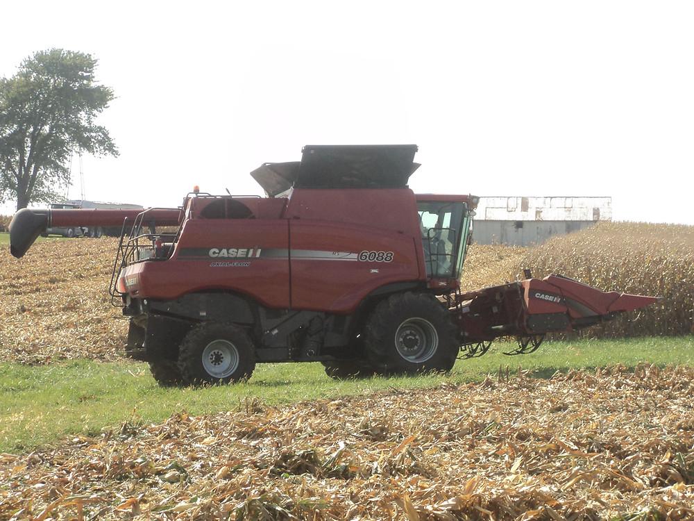A McLean County farmer harvests corn near Anchor last week / CIFN photo.