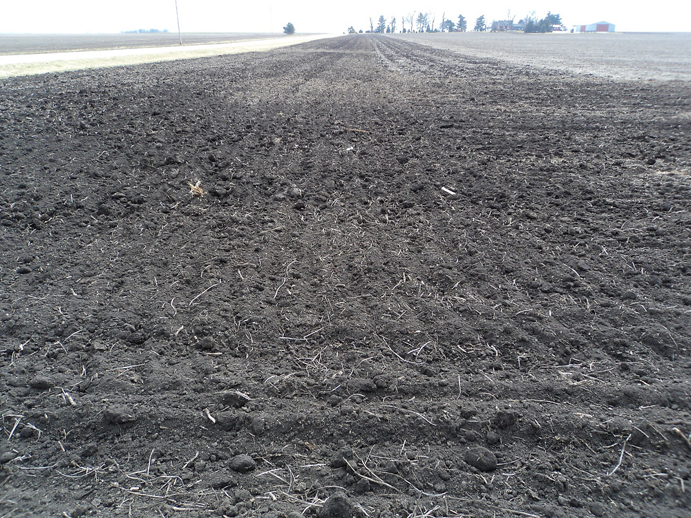 Ground was worked in Livingston County during the mild February / CIFN photo