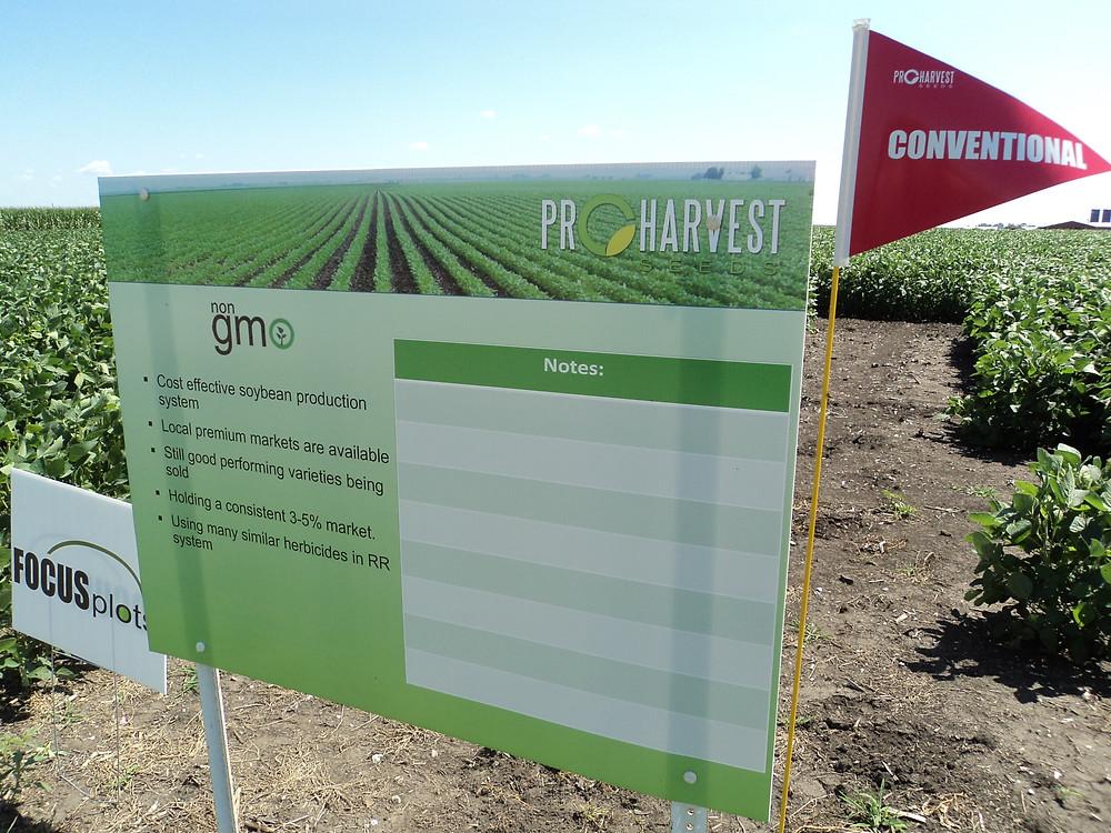 ProHarvest soybeans are shown at the ISU Research Farm near Lexington / CIFN photo.