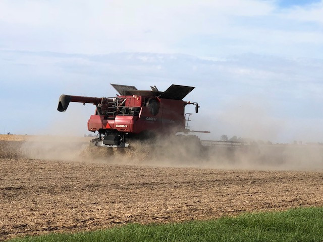 A farmer combines soybeans near Lexington in McLean County over the weekend / CIFN photo.