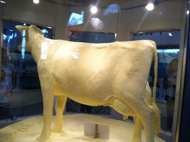 The State Fair butter cow is shown last weekend / CIFN photo.