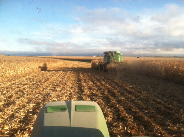 Kent's real view from the cab last week in an area field.
