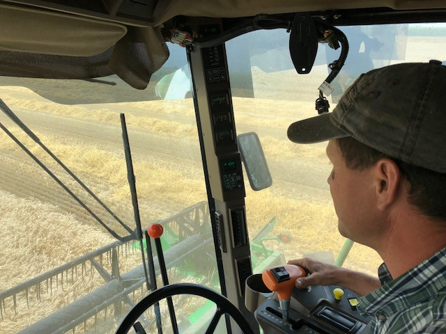 Gary Steidinger harvests a wheat field southwest of Fairbury last week / CIFN photo.