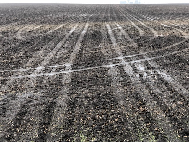 A wet field shown in Central Illinois last spring / CIFN photo.