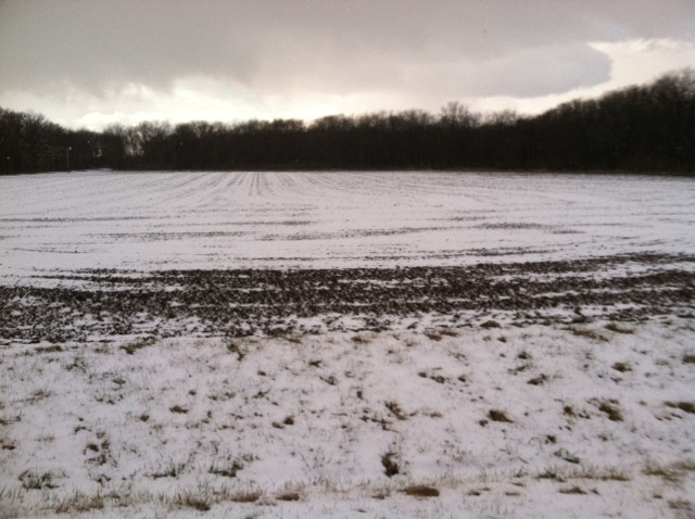 Snow covers an area field just last week in Livingston County / CIFN photo