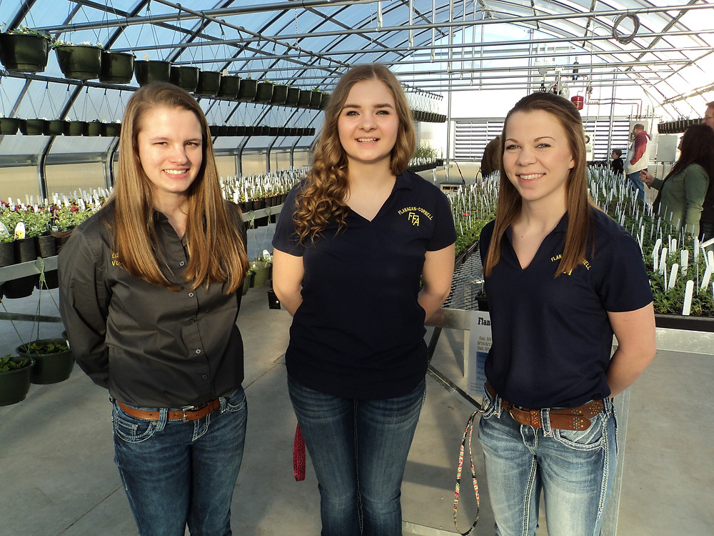 Flanagan-Cornell FFA members Liberty Vollmer, Cheyanne Kreush and Rachael Quaritsch pose in the school's new greenhouse / CIFN photo.