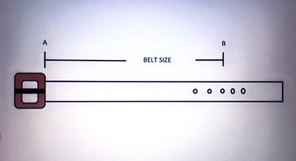 belt%20diagram_edited.jpg