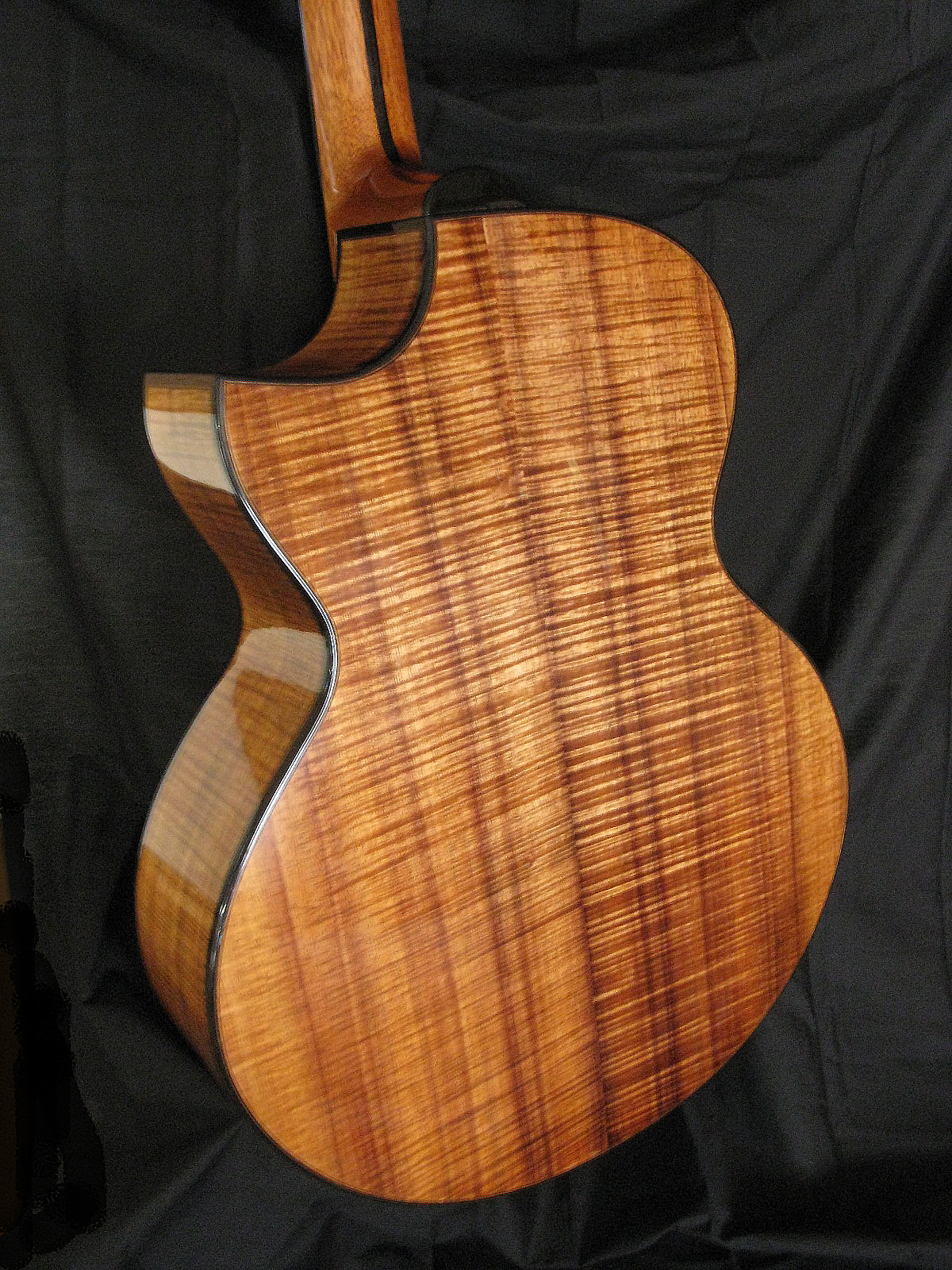 Bamburg Custom Guitar Blackwood